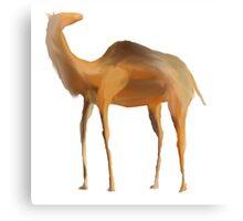 Desert Camel Canvas Print