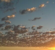 Sunset on the Darling Downs Sticker