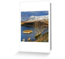 Haweswater Tree Greeting Card