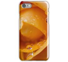 Rose after the rain iPhone Case/Skin