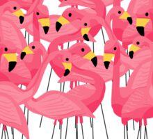 Flamingo Group In The Caribbean Sea Sticker