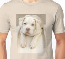 Will You Take Me Home? Unisex T-Shirt