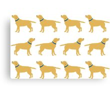 Golden Labradors - Blue Collar Canvas Print