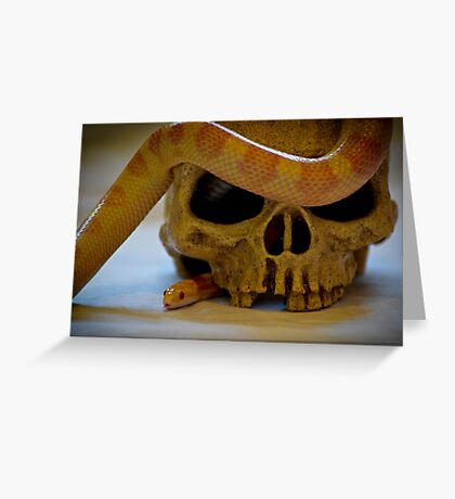 Sigurd's Snake in the Eye Greeting Card