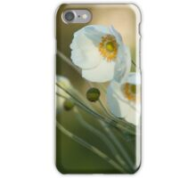 In the footsteps of angels - Windflower iPhone Case/Skin
