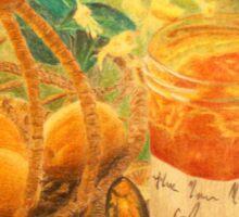 Apricot break Sticker