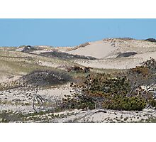 Sand dunes in the spring Photographic Print