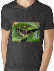 Stare Down Mens V-Neck T-Shirt