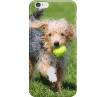 Hairy dog iPhone Case/Skin