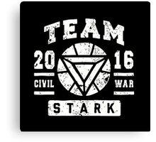 Team Stark - Civil War Canvas Print