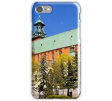The Royal Gniezno Cathedral in Poland iPhone Case/Skin