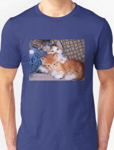 Three Little Kittens Unisex T-Shirt