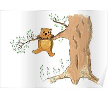 Silly bear and tree Poster