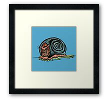 Comedy Snail Framed Print