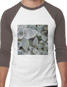 Softie Succulent Men's Baseball ¾ T-Shirt