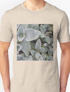 Softie Succulent T-Shirt