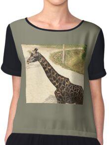 2016 Giraffe Chiffon Top