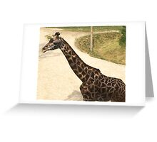 2016 Giraffe Greeting Card