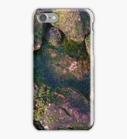 Mossy Rock Pool iPhone Case/Skin