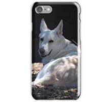Backyard Dog iPhone Case/Skin