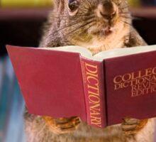 Scholar Squirrel Sticker
