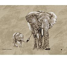 Swirly Elephant Family Photographic Print