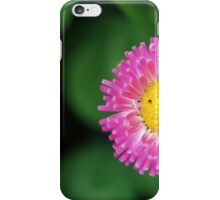 pink daisy on green iPhone Case/Skin