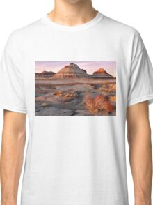 Petrified Forest National Park Classic T-Shirt
