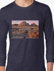 Petrified Forest National Park Long Sleeve T-Shirt