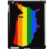 LGBT USA! iPad Case/Skin