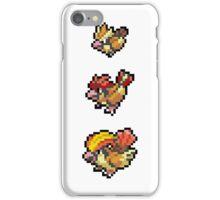 Pidgeot Evolution iPhone Case/Skin