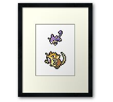 Raticate Evolution Framed Print