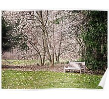 Park Bench under Magnolia Trees Poster