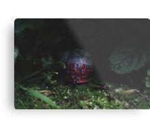 Miniature World #3 Metal Print