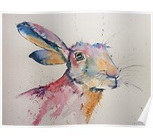 Happy Hare! Poster