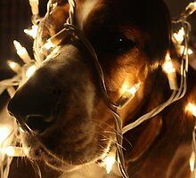 Christmas Cheer Basset by rwhitney22
