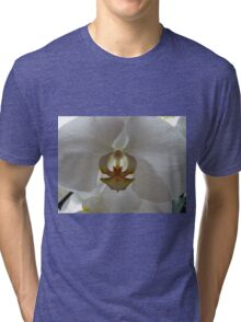 Backlit Orchid Tri-blend T-Shirt