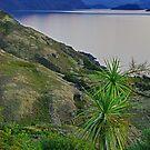 Lake Wanaka Dusk by Harry Oldmeadow