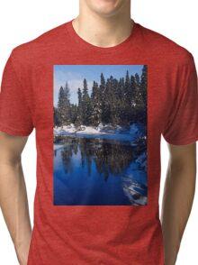 Cool Blue Shadows - Riverbank Winter Forest Tri-blend T-Shirt