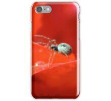 ITSY BITSY SPIDER iPhone Case/Skin