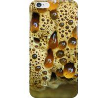 """Weeping """"Bleeding Tooth"""" Mushroom iPhone Case/Skin"""