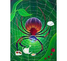 Spider Snack Photographic Print