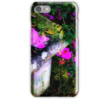 Nature's Pallet #2 iPhone Case/Skin