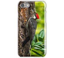 Female Pileated Woodpecker - No. 1 iPhone Case/Skin
