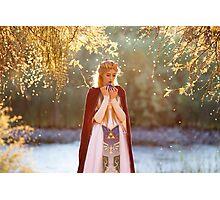 Legend of Zelda Fairy Tale Photographic Print