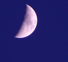 blue with moon by Doreen Connors