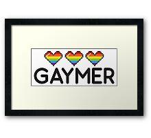 Gaymer Funny Rainbow LGBT Pride Video Game Lives Framed Print