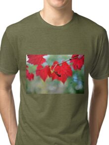 Autumn Twirls Tri-blend T-Shirt
