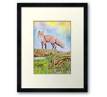 The fox in the woods Framed Print
