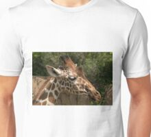 Closeup of Reticulated Giraffe Head Unisex T-Shirt